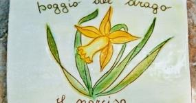 Agriturismo Poggio del Drago - Camera Narciso