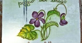 Agriturismo Poggio del Drago - Camera Violetta